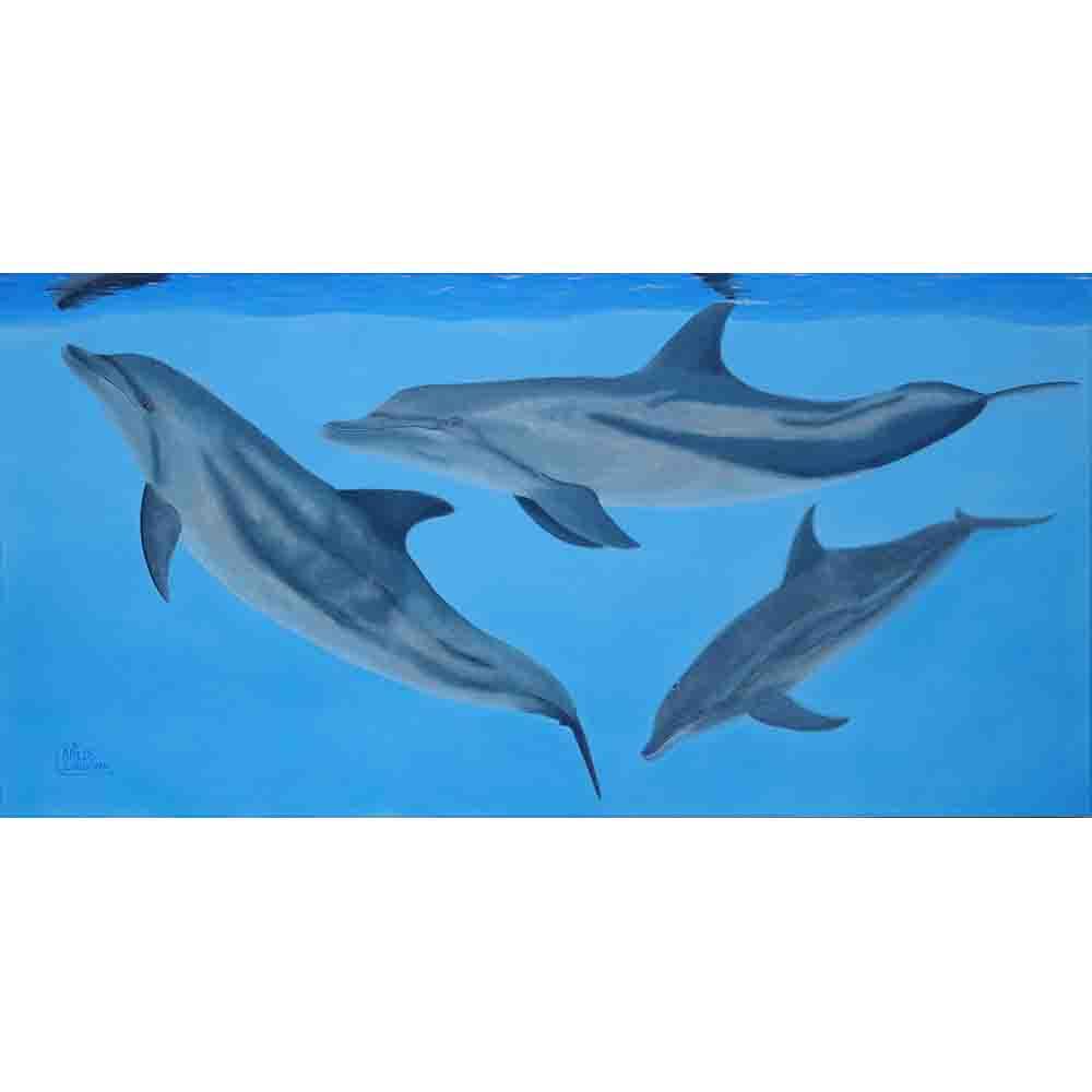 Three Amigos-Dolphins